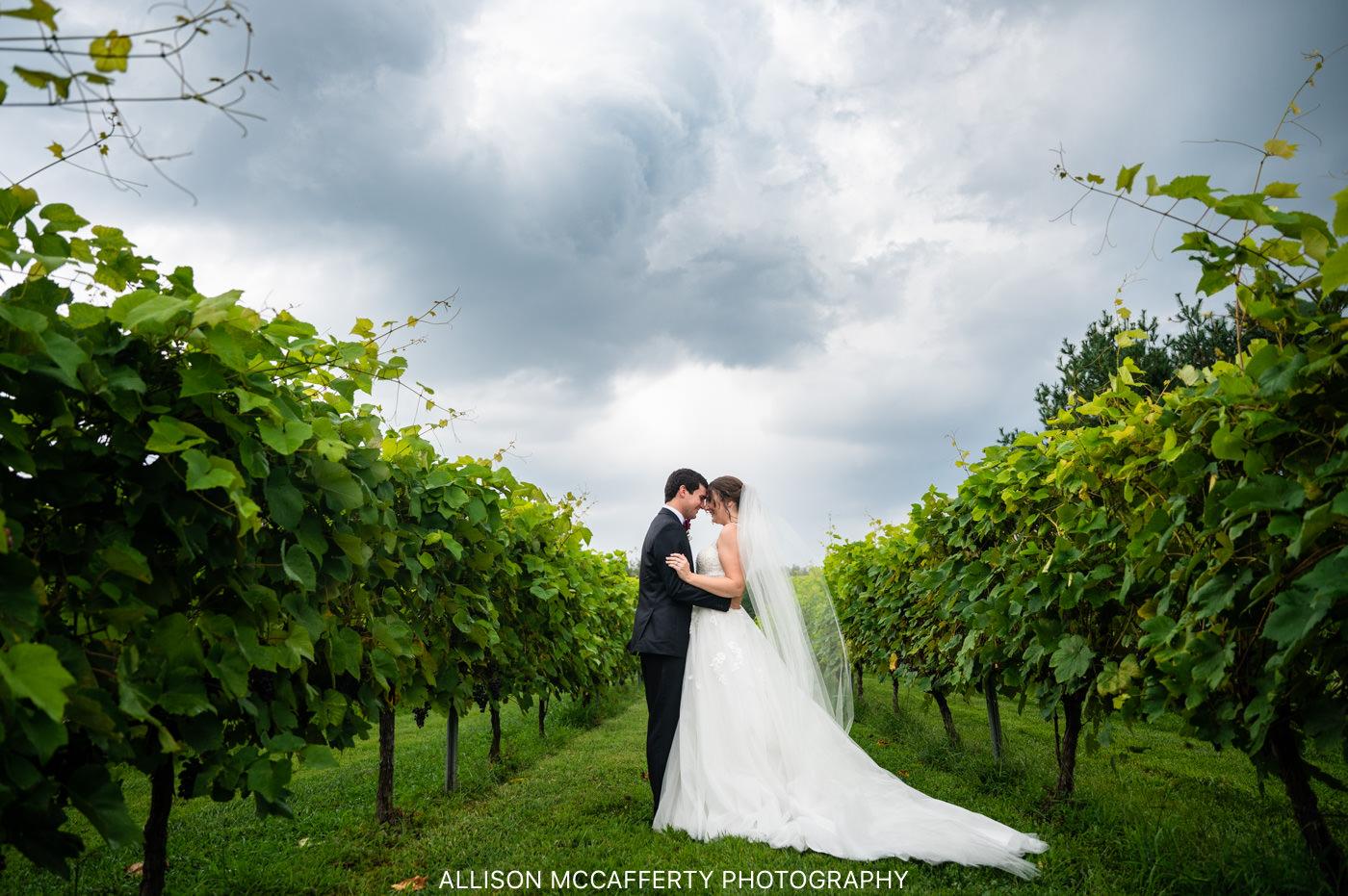 Valenzano's Winery Wedding Photographers