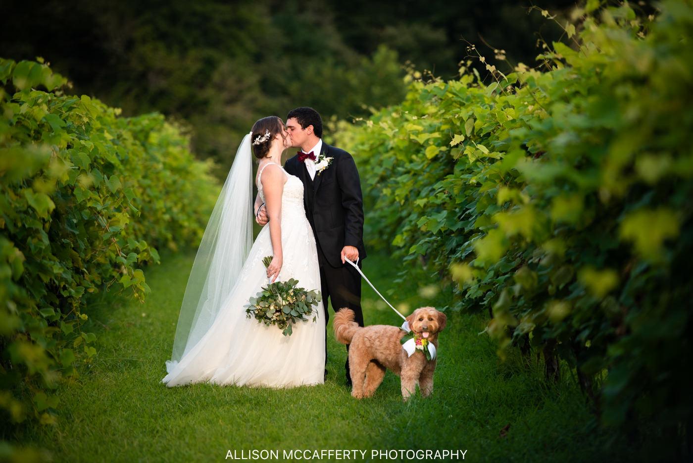 New Jersey Vineyard Wedding Venue